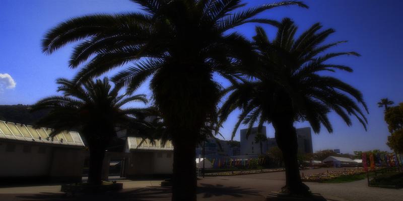 藍場浜公園、吉野川中流夕景、吉野川橋夕景
